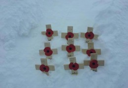 9 Poppies – An In Memory Challenge